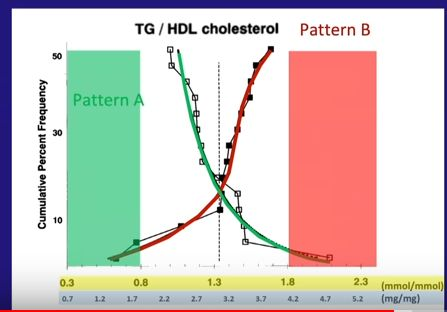 Triglicerides divided by HDL