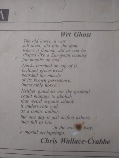 Wet Ghost