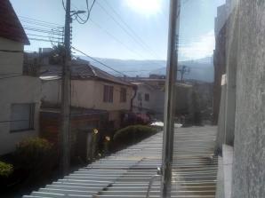 Day 6 Quarantine Bogota 2