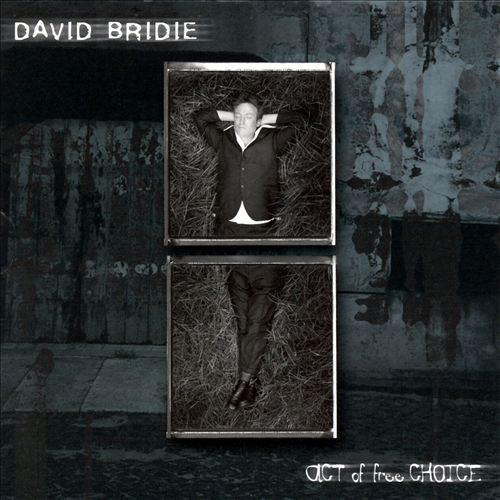 David Bridie 2000